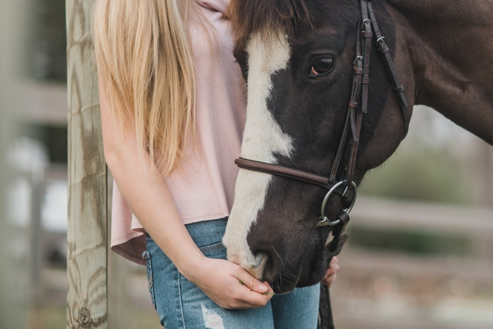 woman standing beside black and white horse at daytime