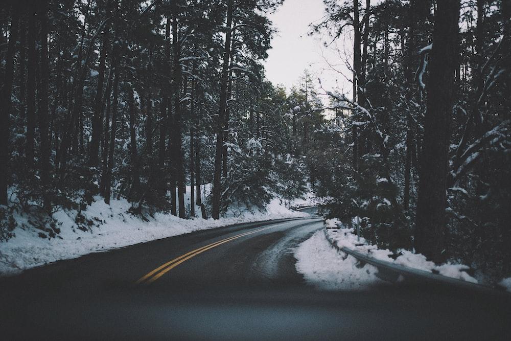 asphalt road between snow land