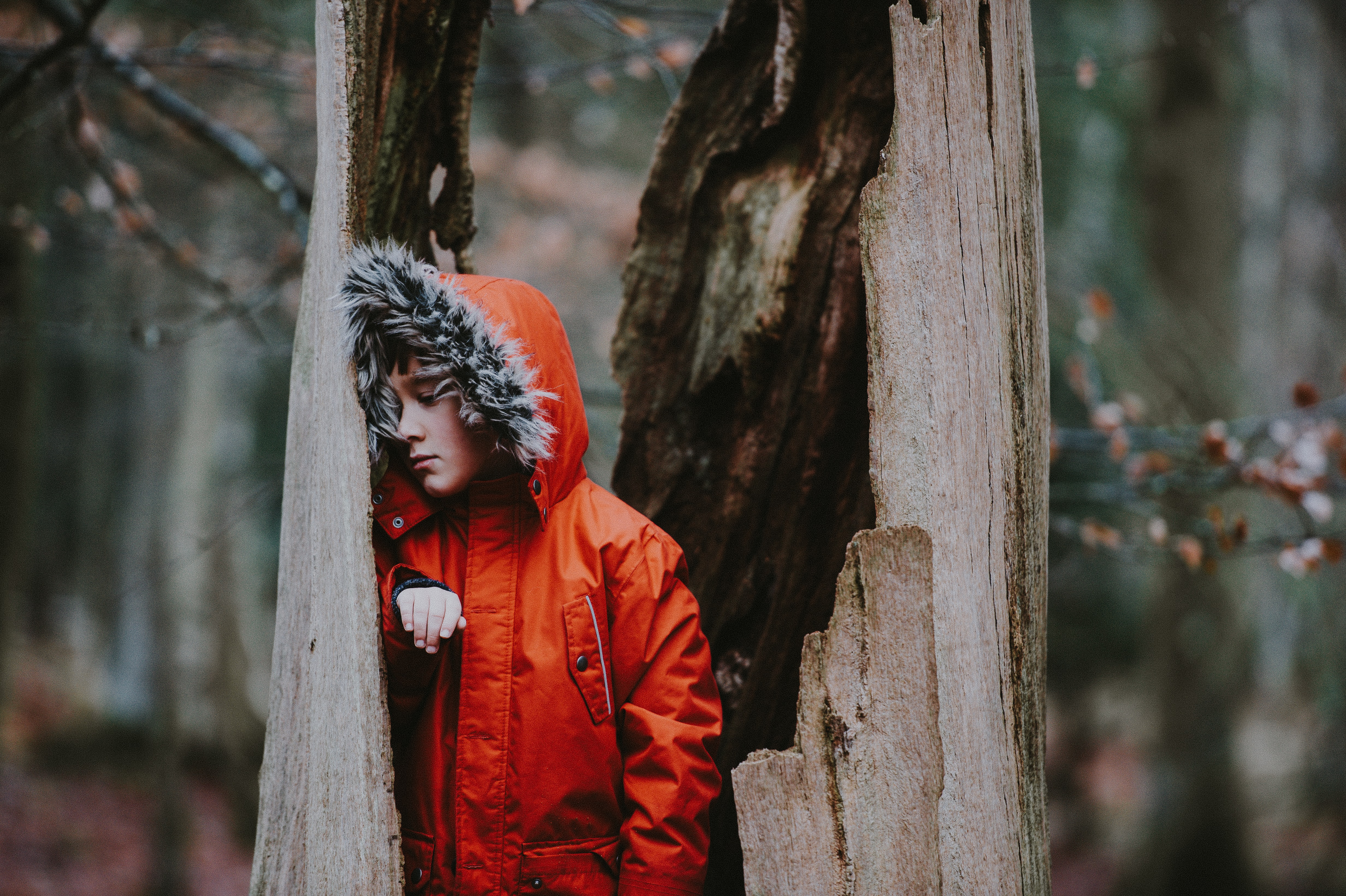 person wearing parka leaning on dead tree during daytime
