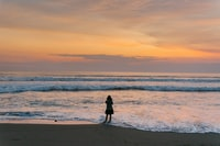 silhouette of woman standing beside seashore