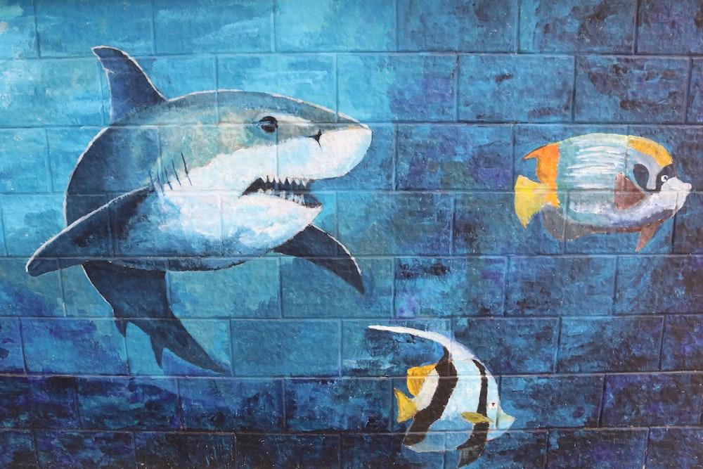 shark and two fishes wall graffiti