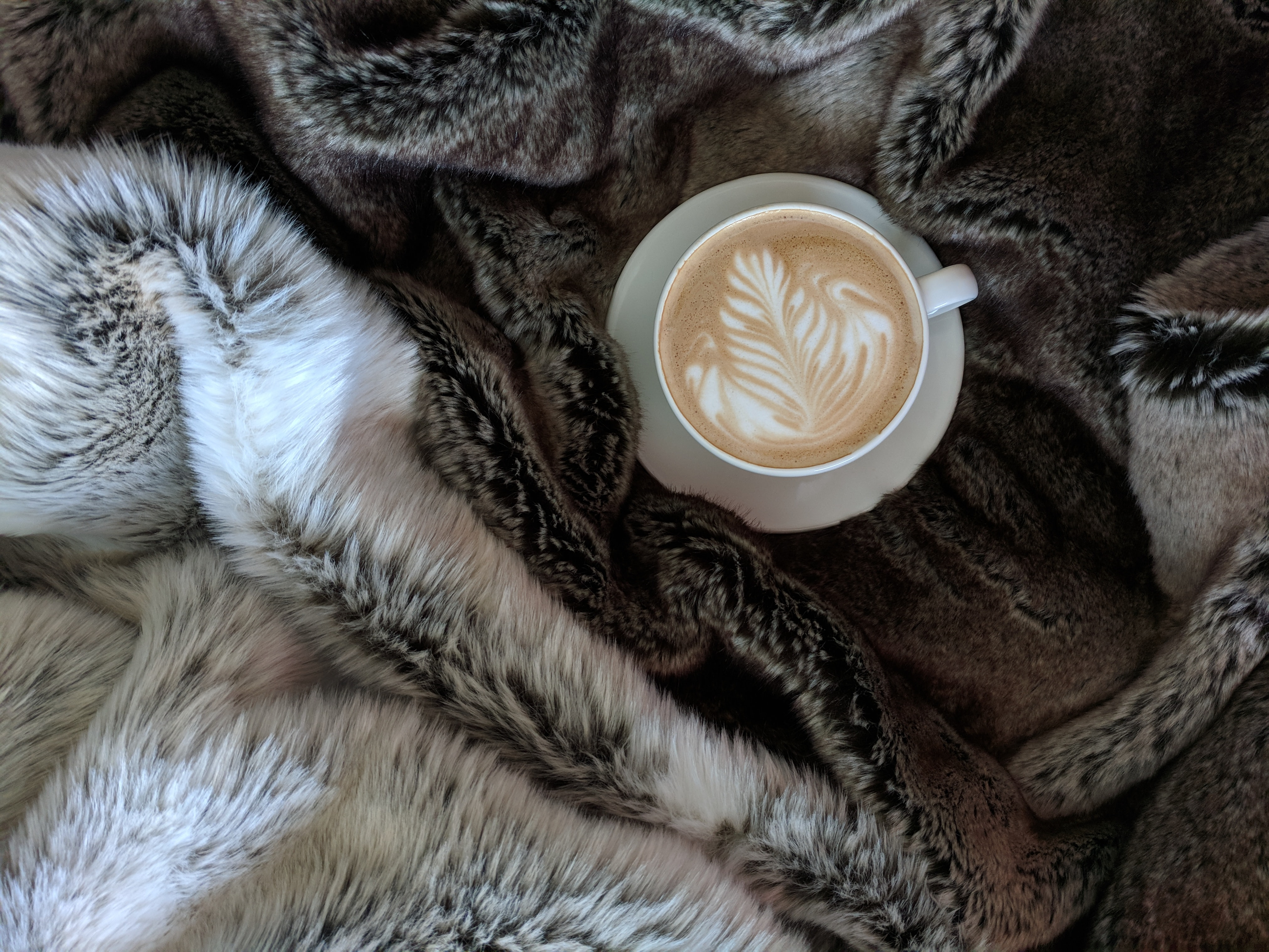 teacup filled with cappuccino