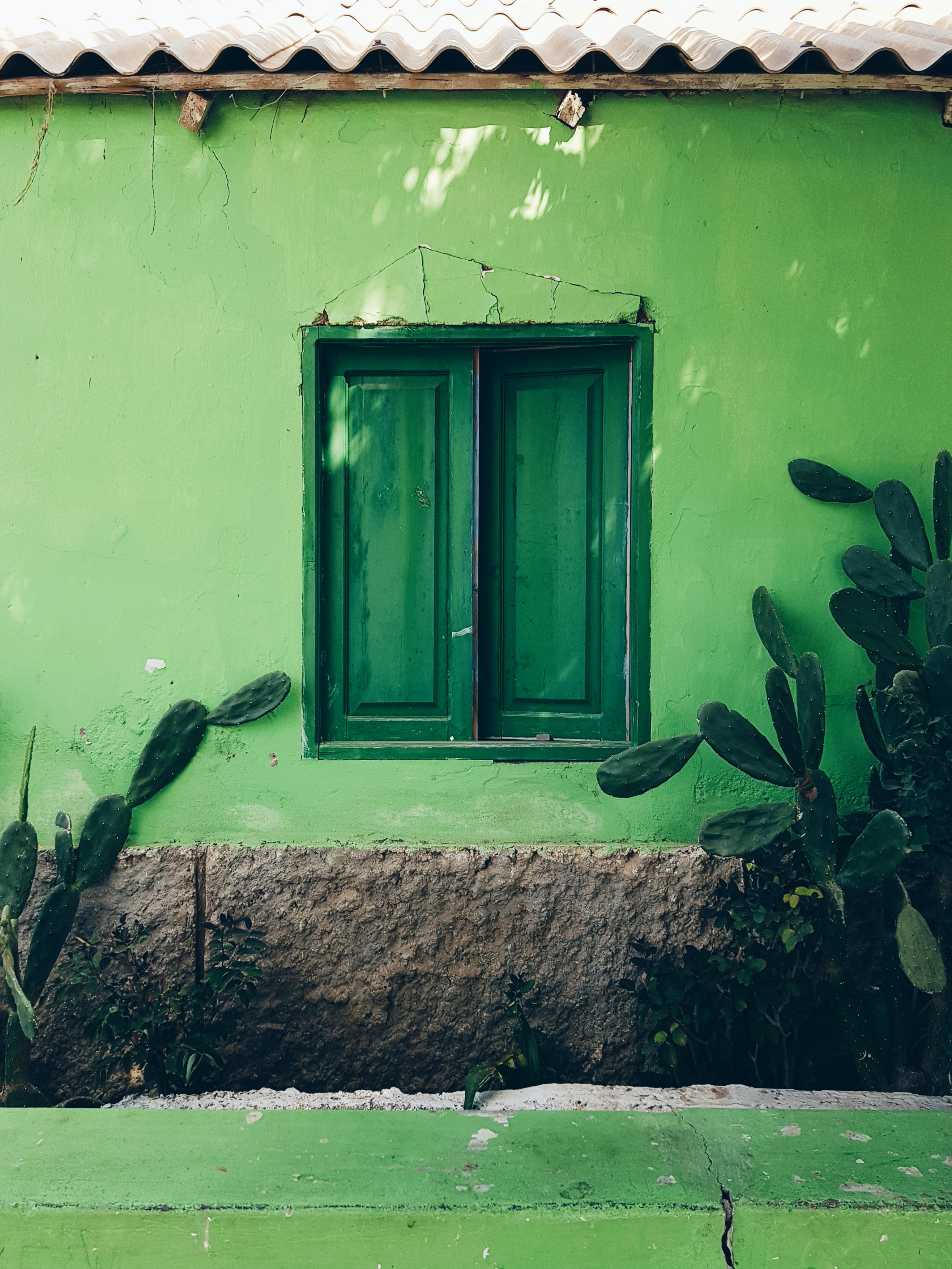 closed green wooden window
