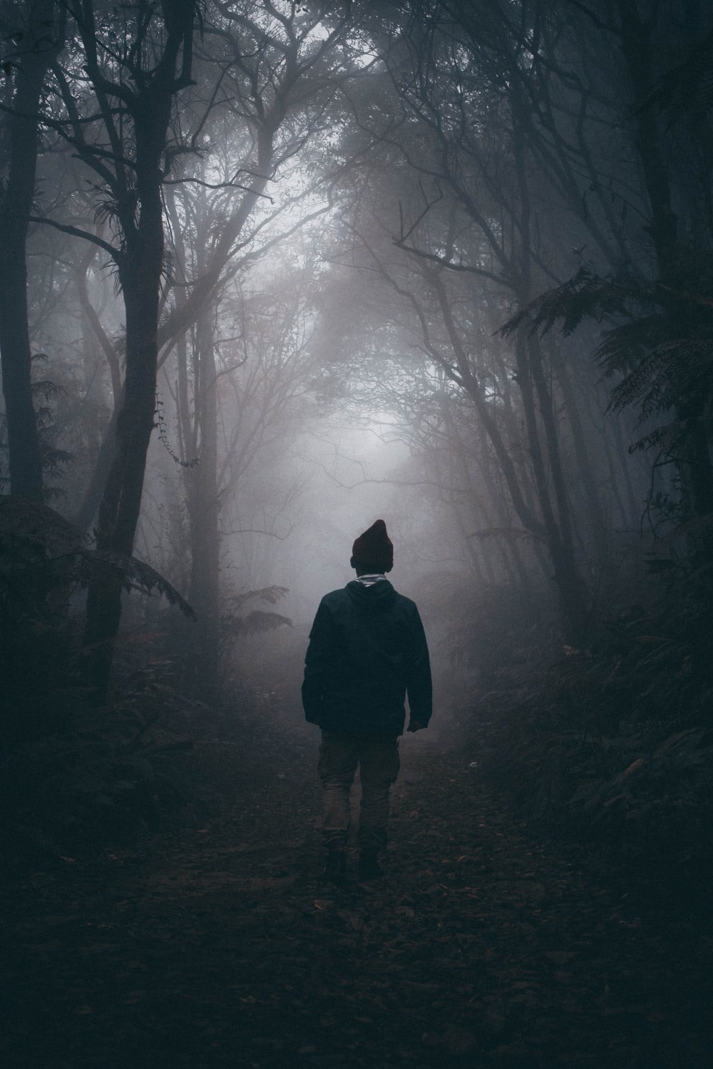 man waling on woods surrounded by mist