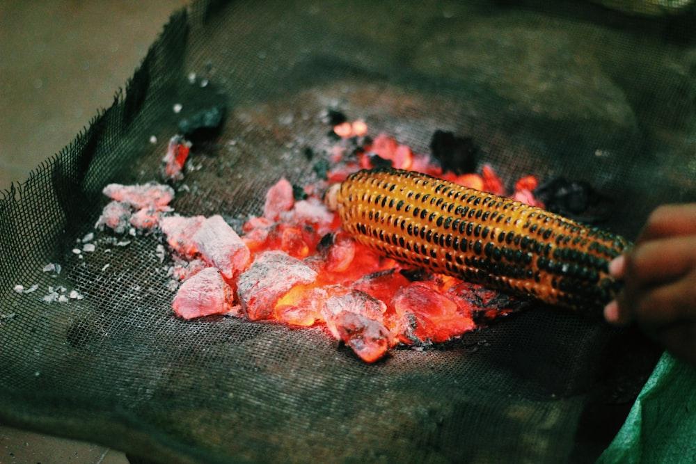person grilling corn