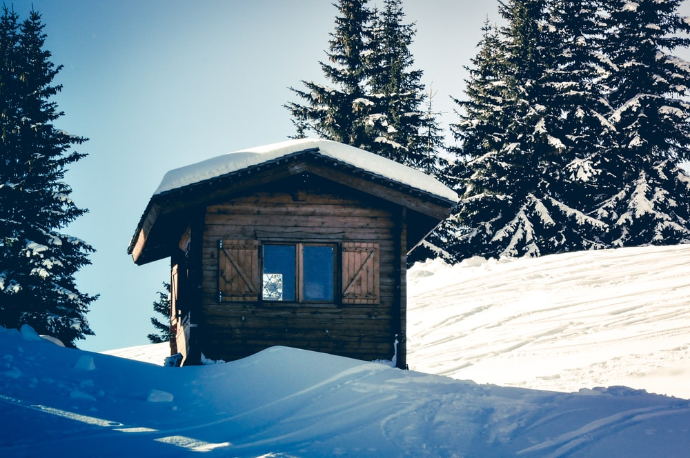 brown wooden house beside trees during winter