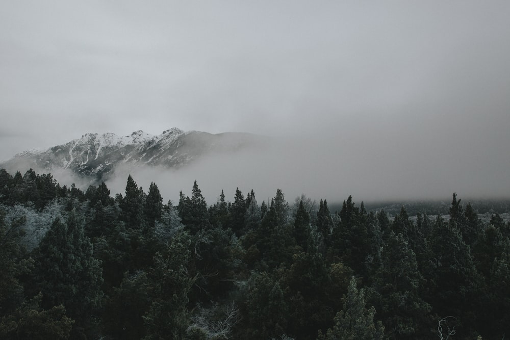 photography foggy mountain