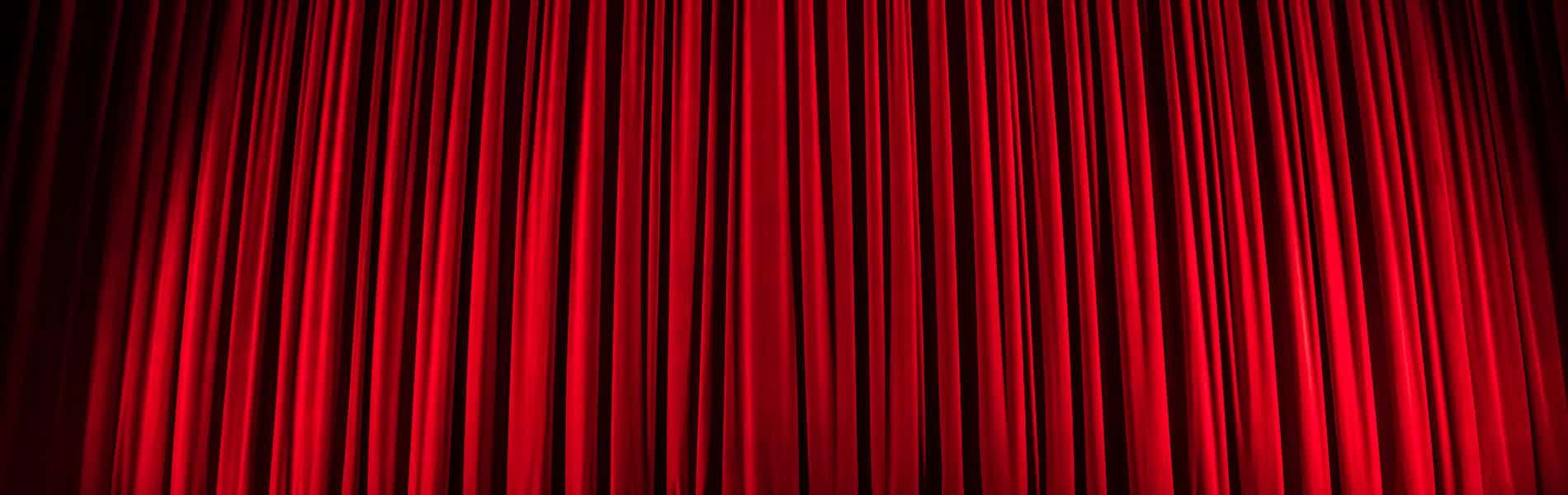 להיות זבוב על קיר חדר הטיפולים: פרפורמנס טיפולי - הטיפול כאי