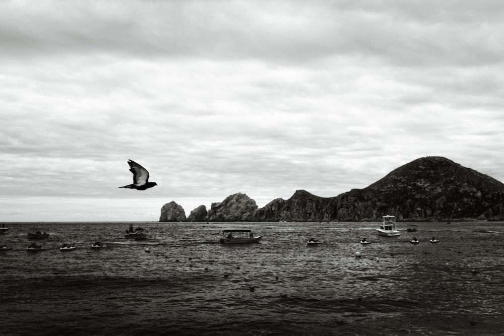 grayscale photo of island