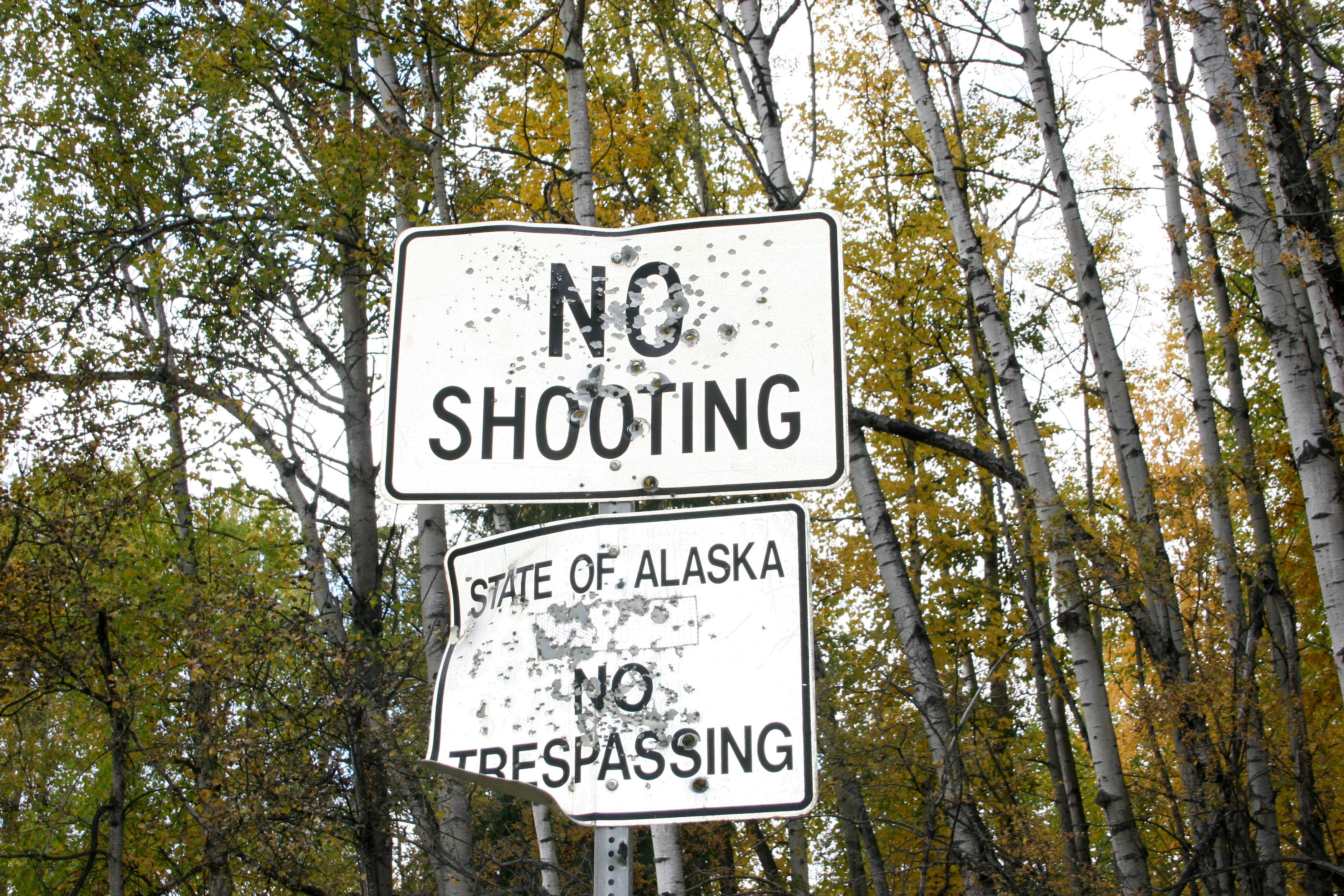 No Shooting signage