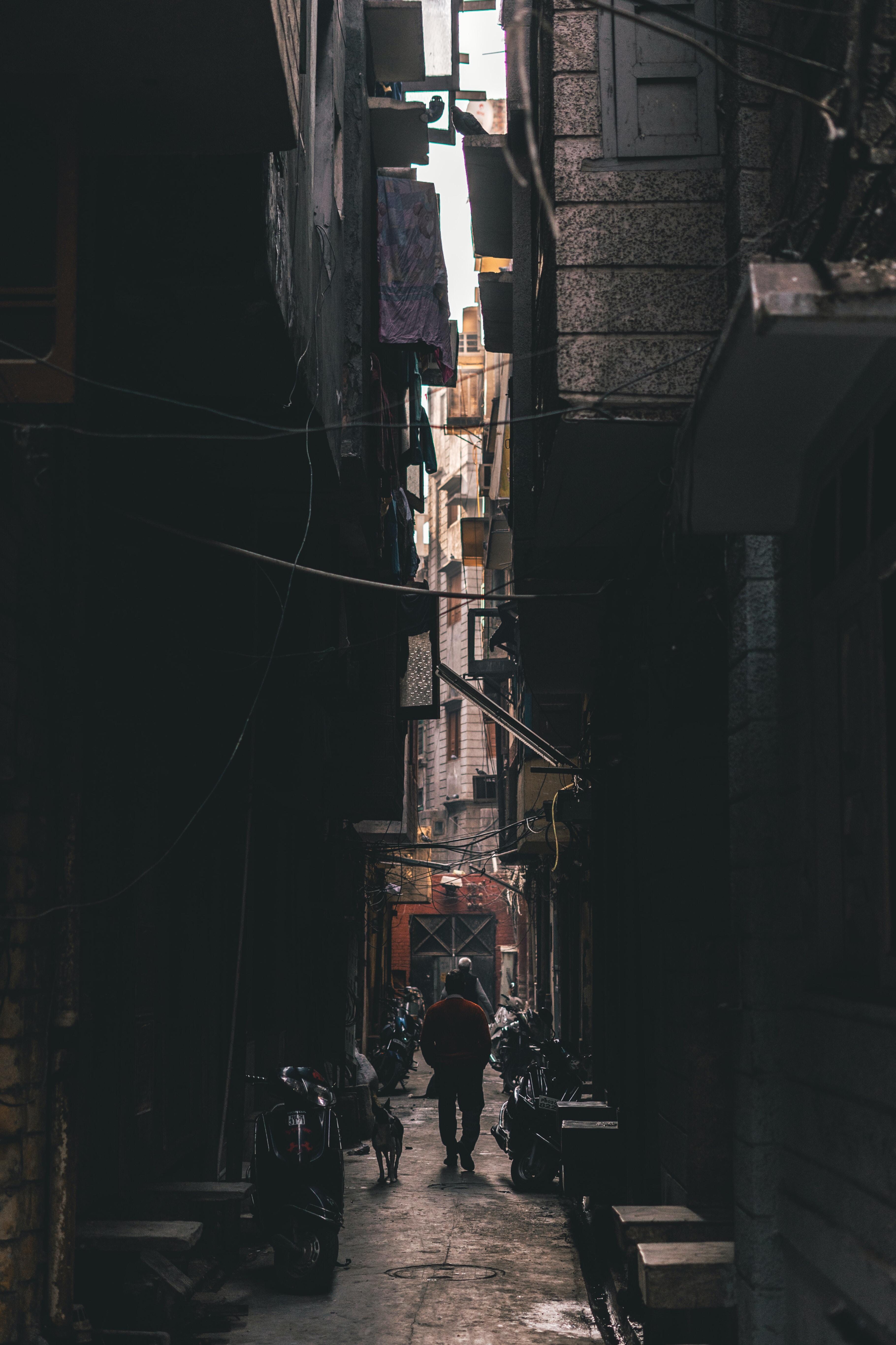 man walking beside dog between buildings