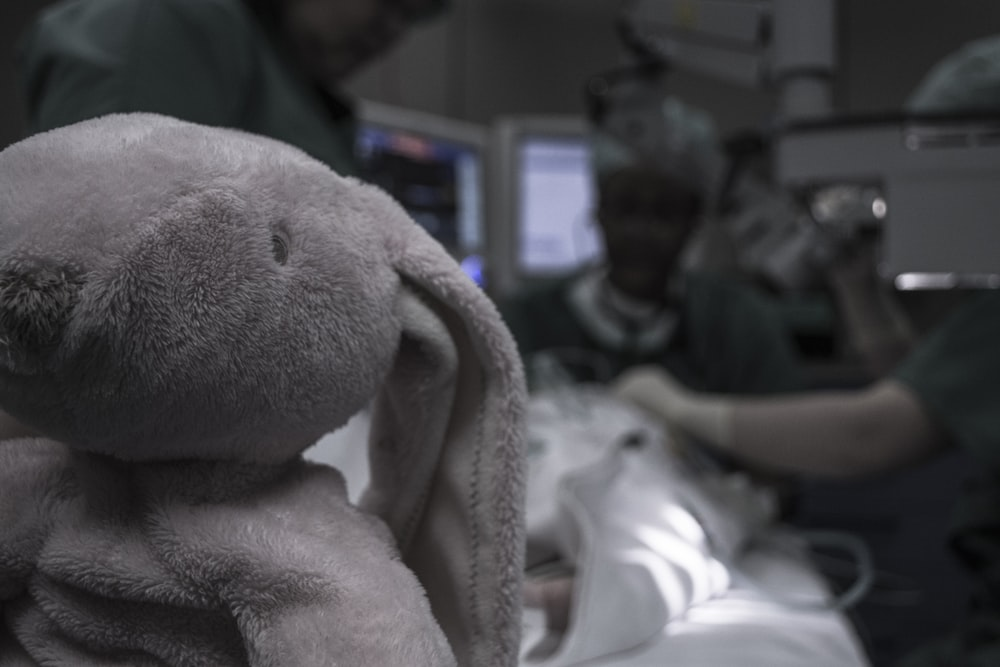 gray elephant plush toy