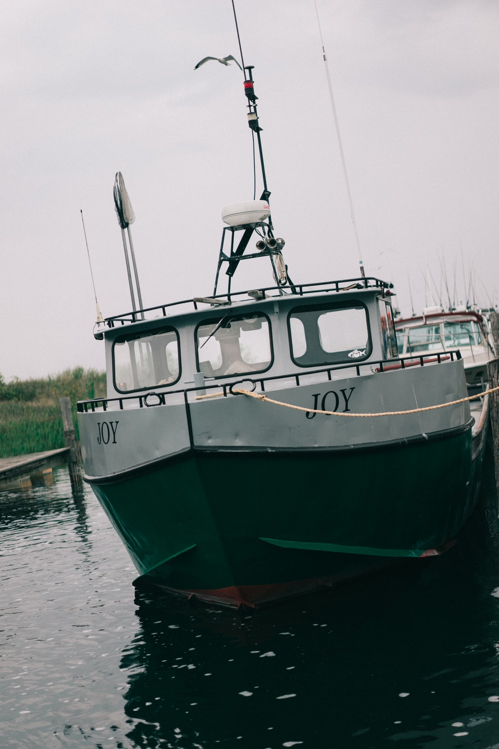 white and green boat