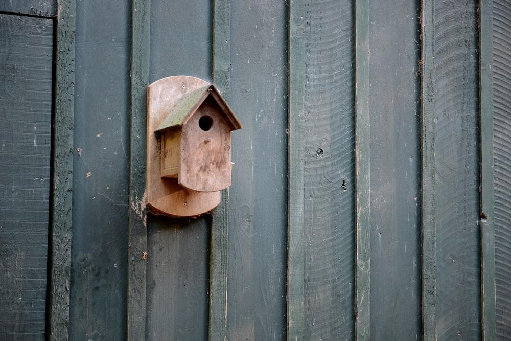 nest box mounted on black wall
