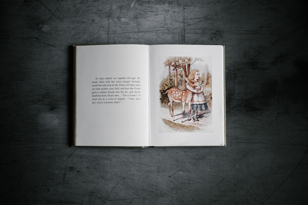 story book on gray surface