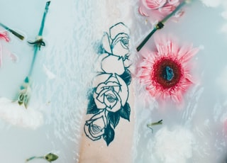 flowers on person's hand