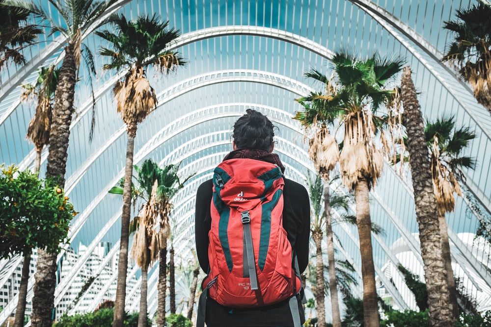 man carrying backpack looking at palm trees during daytime