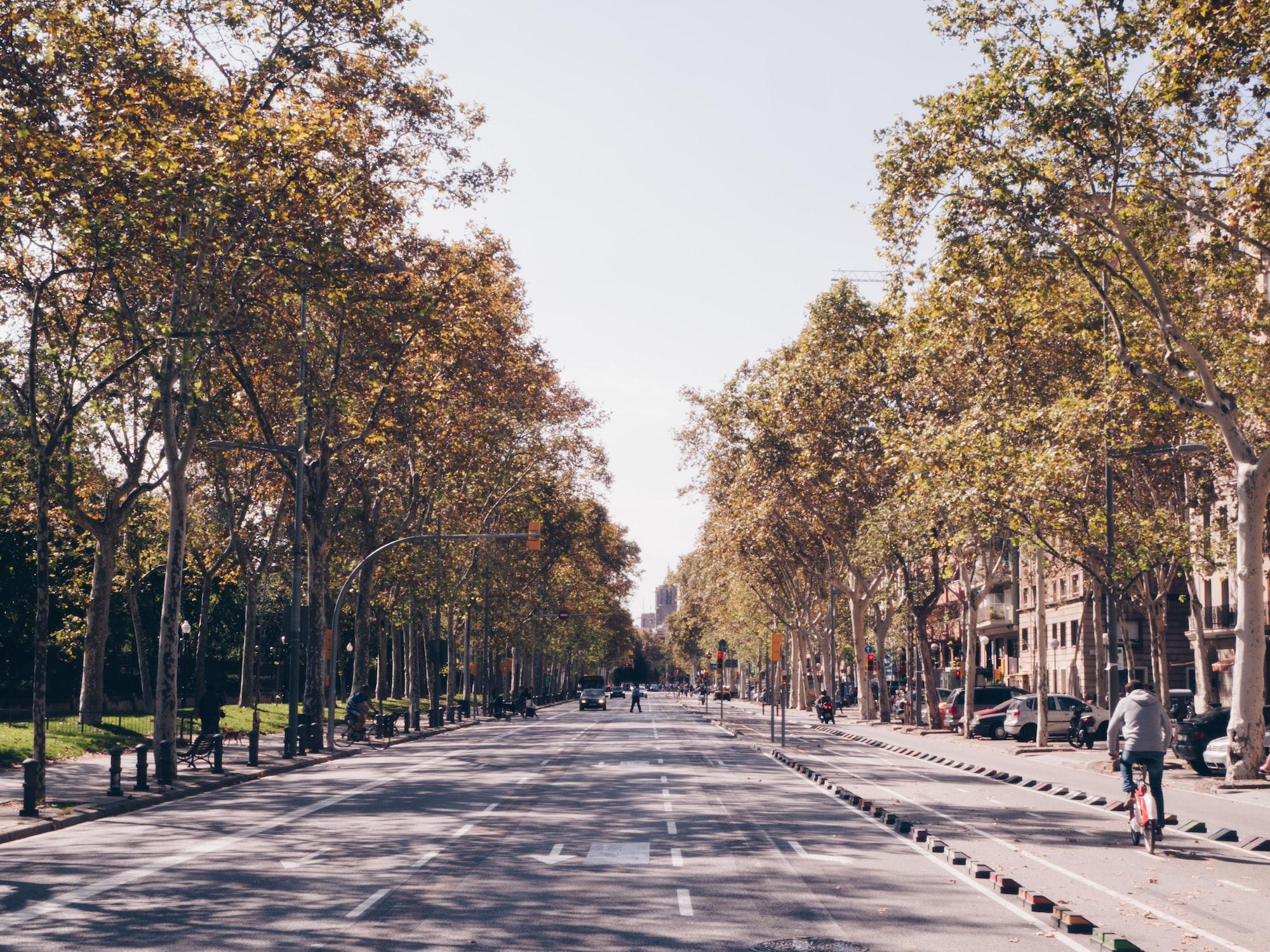 Sunny Barcelona street during autumn