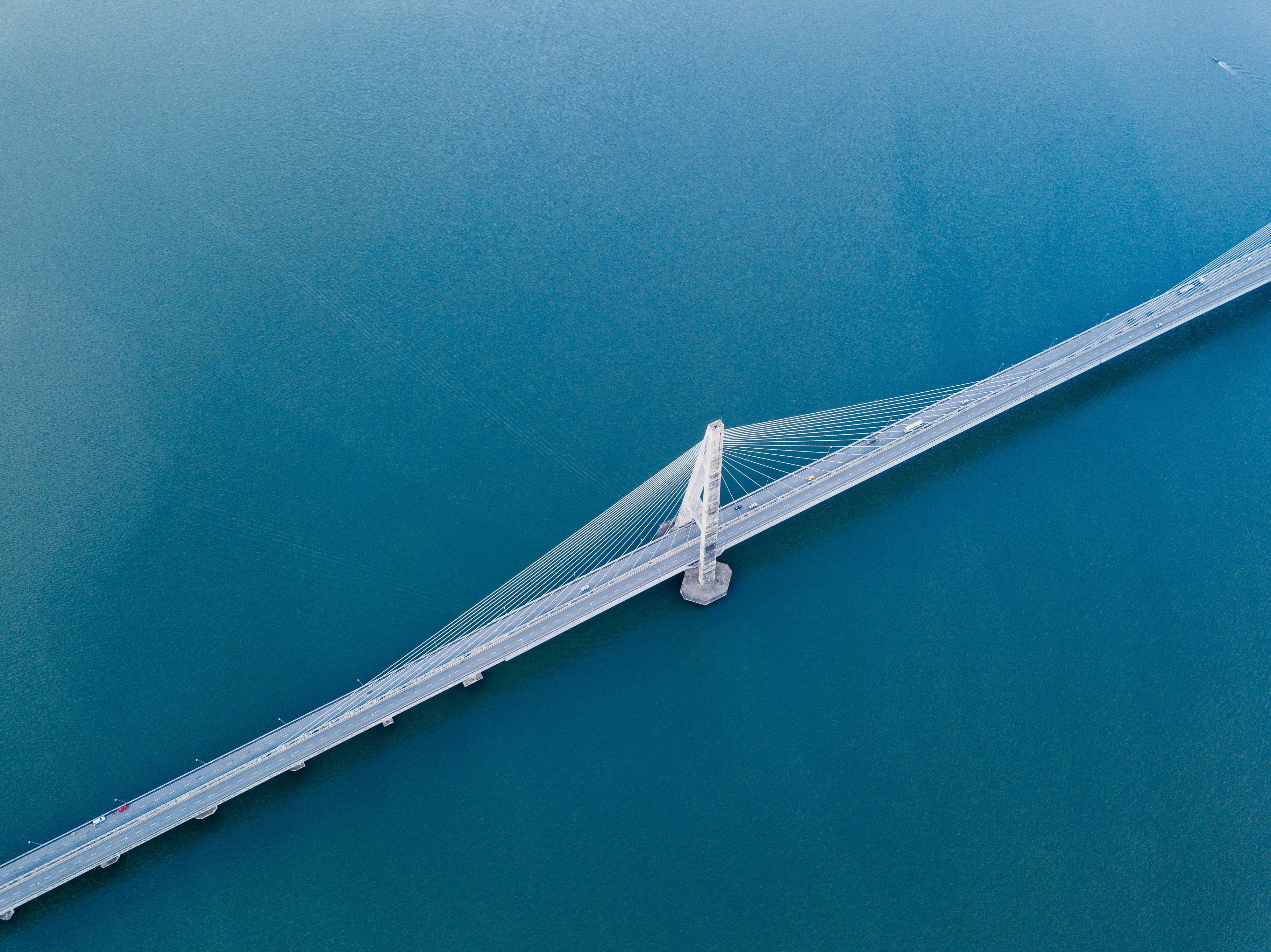 aerial photo of black bridge
