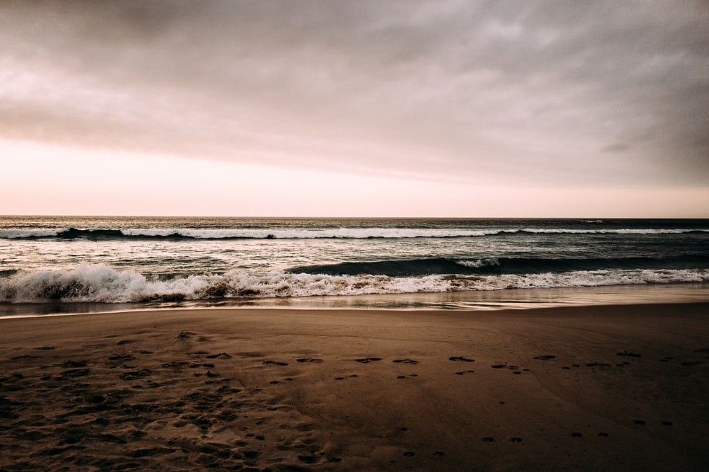 footprints on seashore at daytime