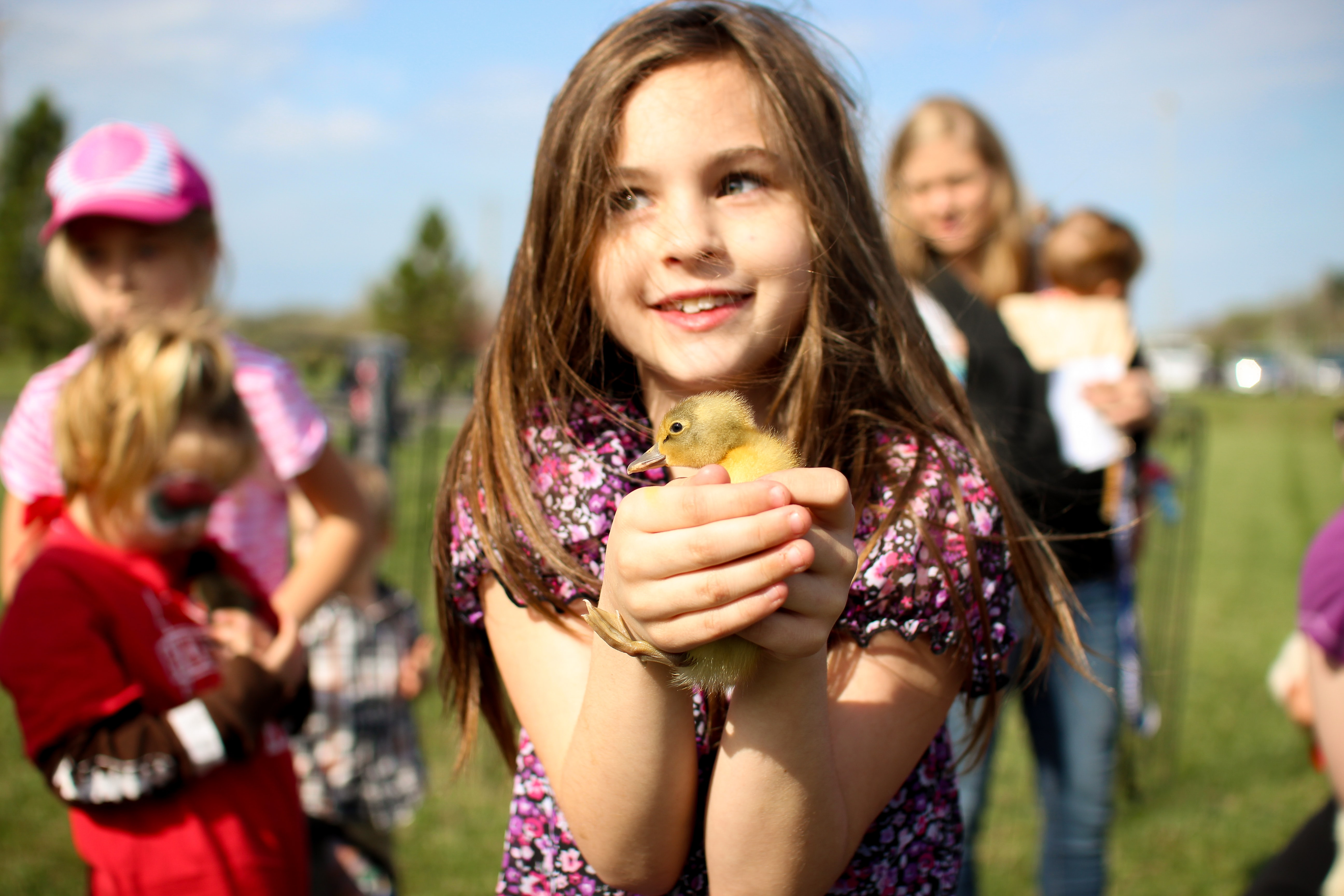 girl holding brown duckling
