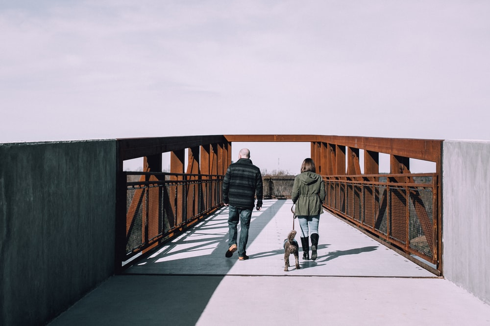 dog, man, and woman about to cross on bridge