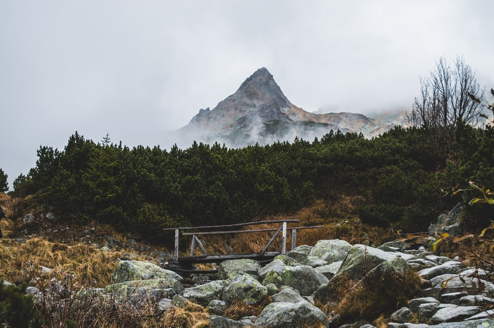fog-covered mountain during cloudy day