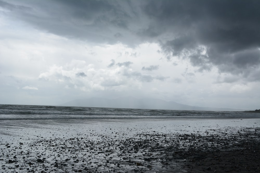 grayscale photo of seashore