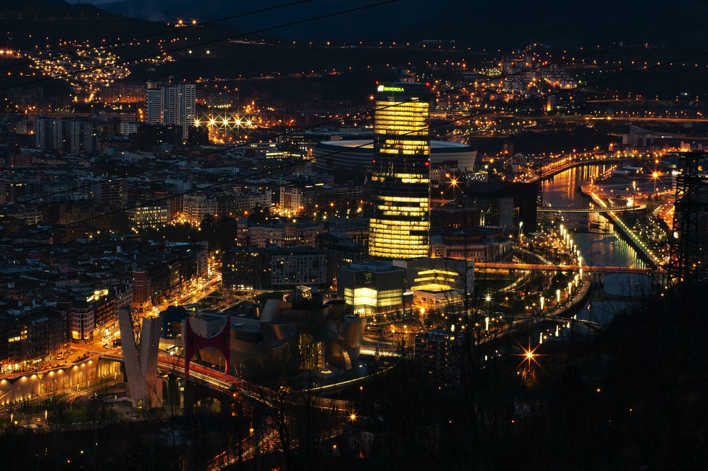 bird's eye view of buildings during nighttime