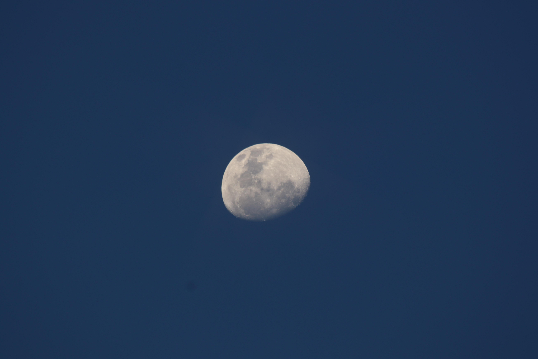 quarter moon