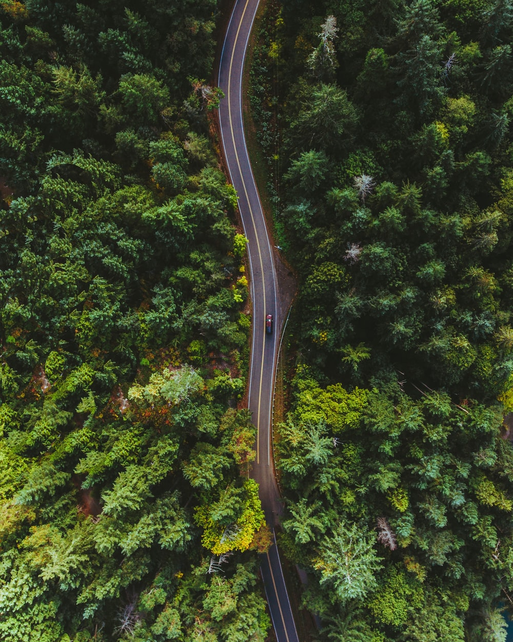 bird's eye view of car on road