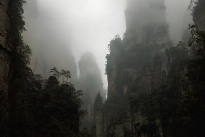Rising sublimely from the misty subtropical forest of northwest Hunan are 243 peaks surrounded by over 3000 karst upthrusts, a conconcentration not seen elsewhere in the world. The picture is completed by waterfalls, limestone caves (including Asia's largest chamber) and rivers suitable for organised rafting trips. Nearly two dozen rare species of flora and fauna call the region home and botanists delight in the 3000-odd plant species within the park. Even amateur wildlife spotters may get a gander at a clouded leopard or a pangolin.