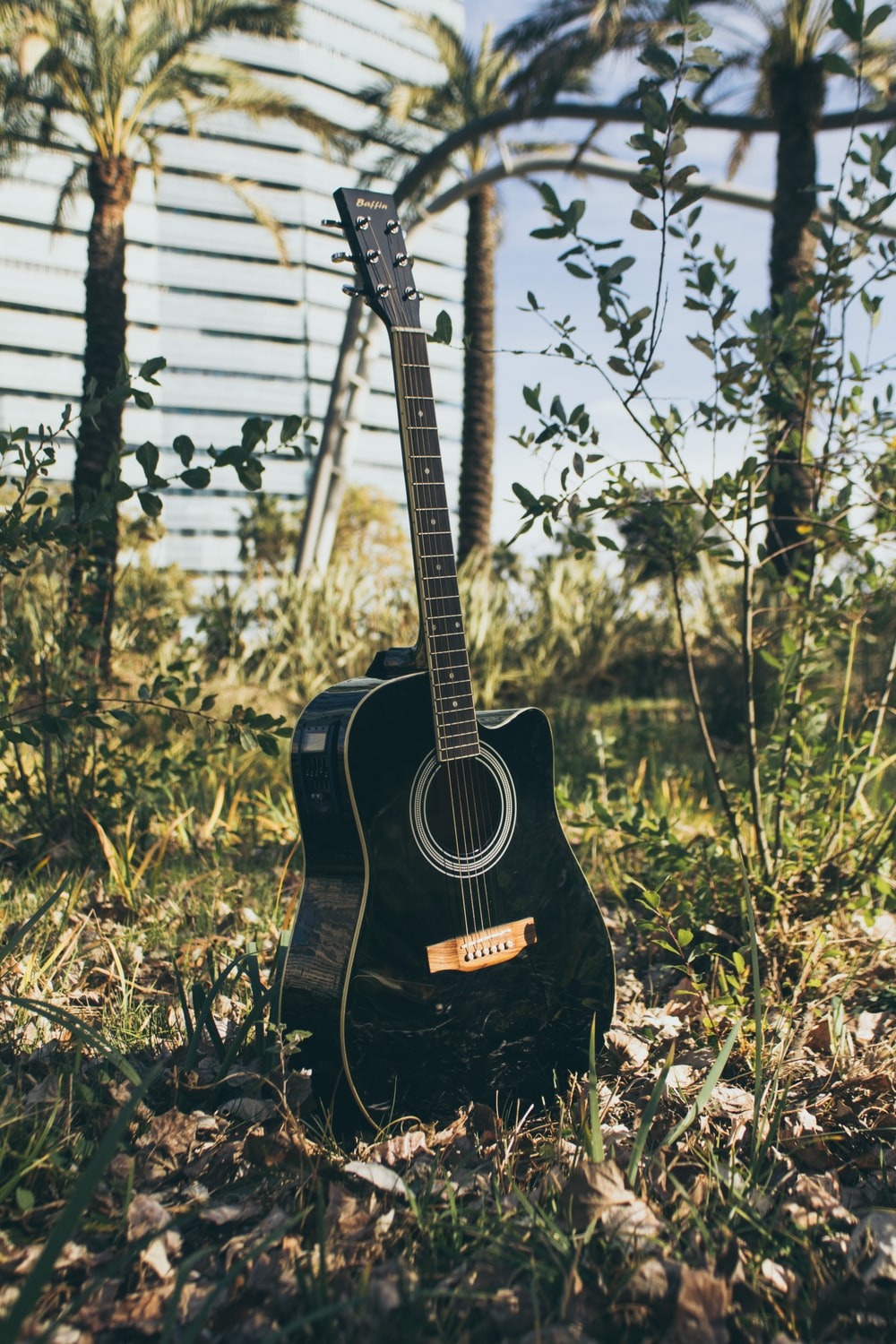 black acoustic guitar on green grass