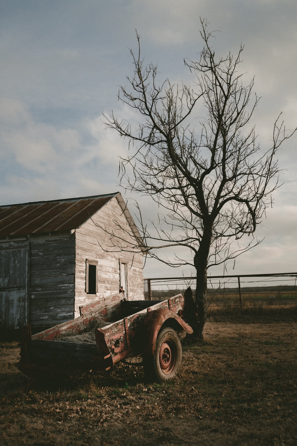 wagon near wooden house and bare tree