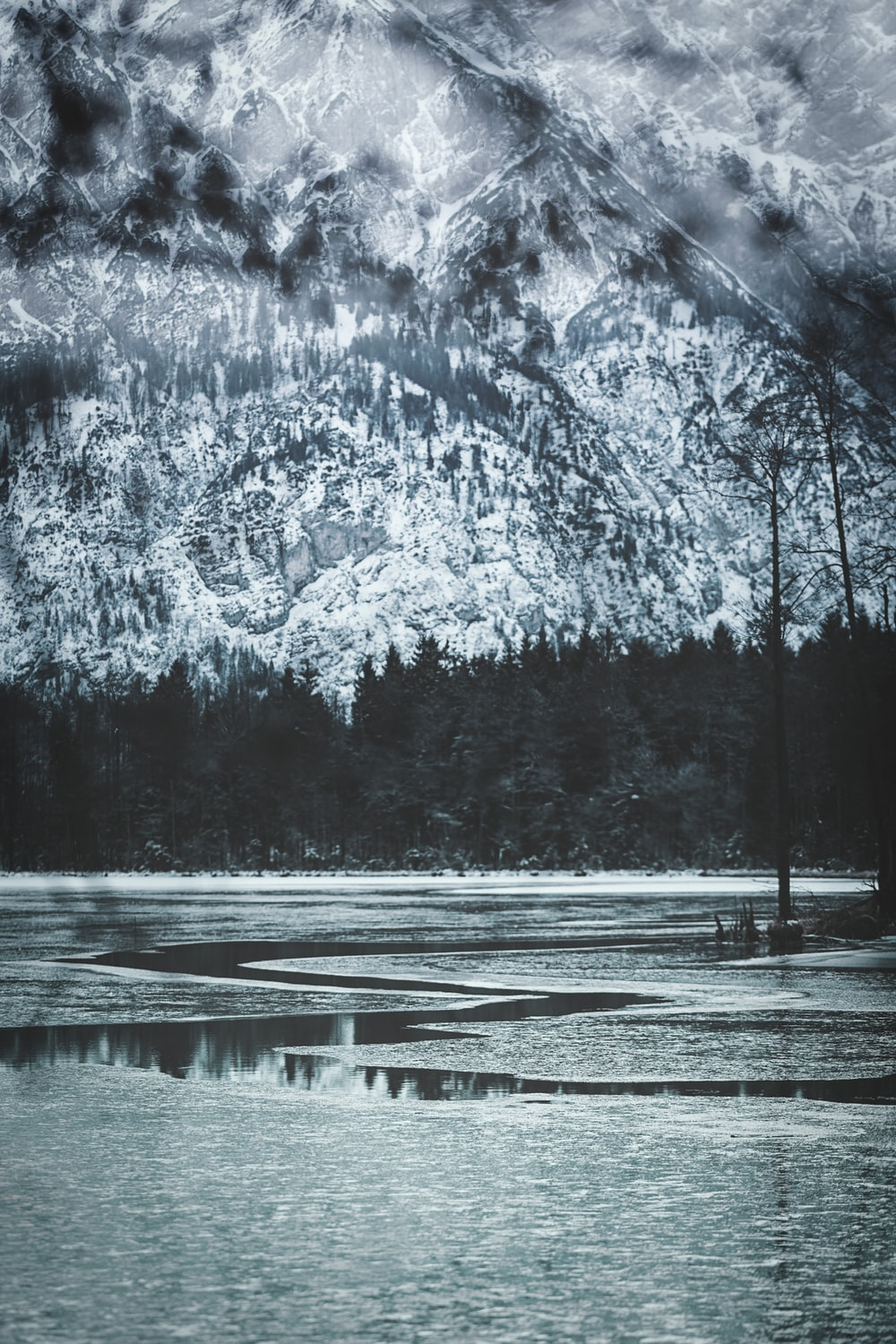 lake and trees during winter with glacier mountains at the distance