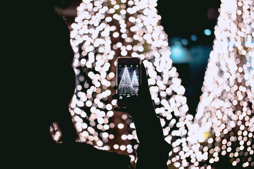 person taking picture of Christmas trees