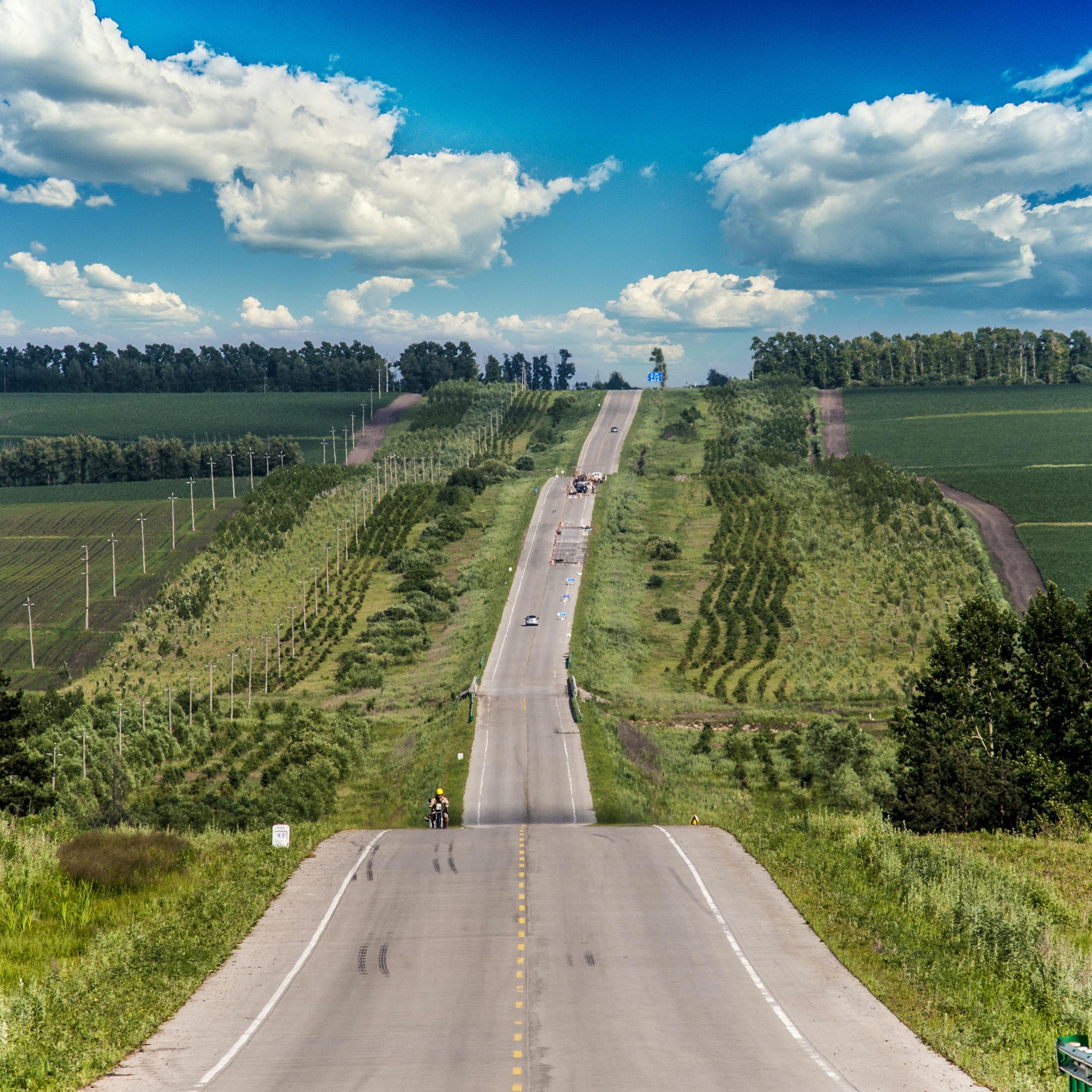 long road in between bushes