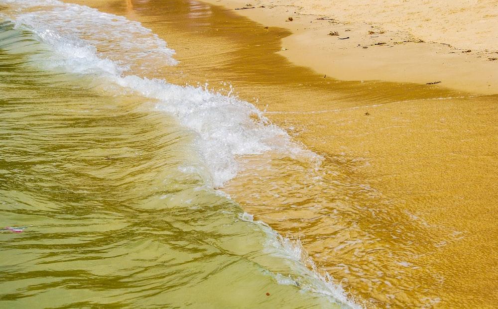 sea wave crashing on seashore
