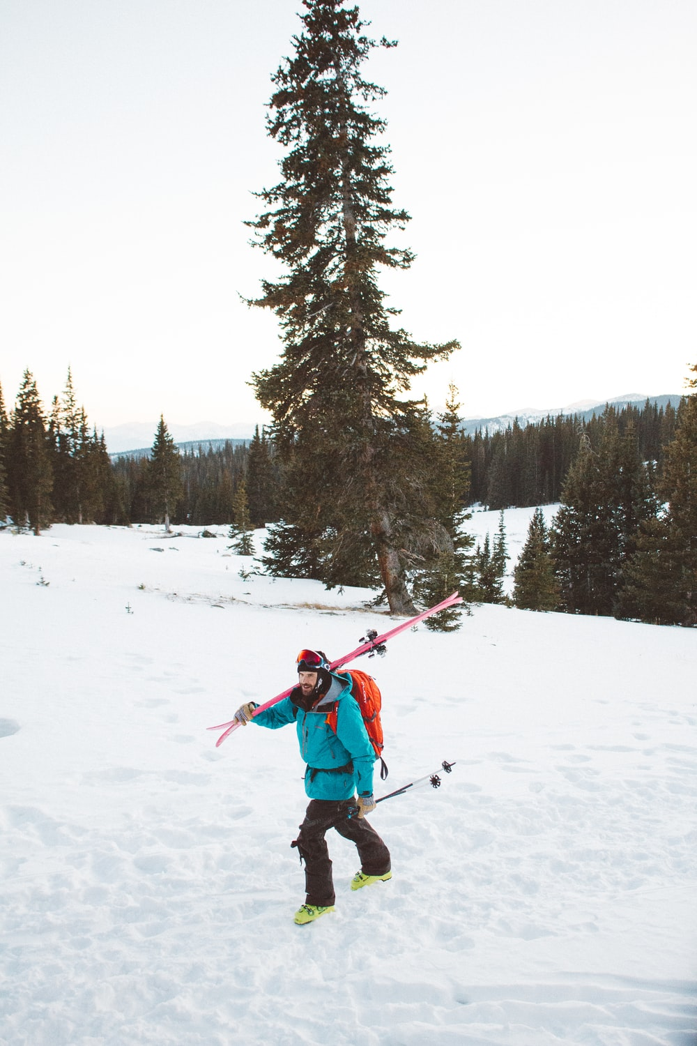 black carrying skis on snow