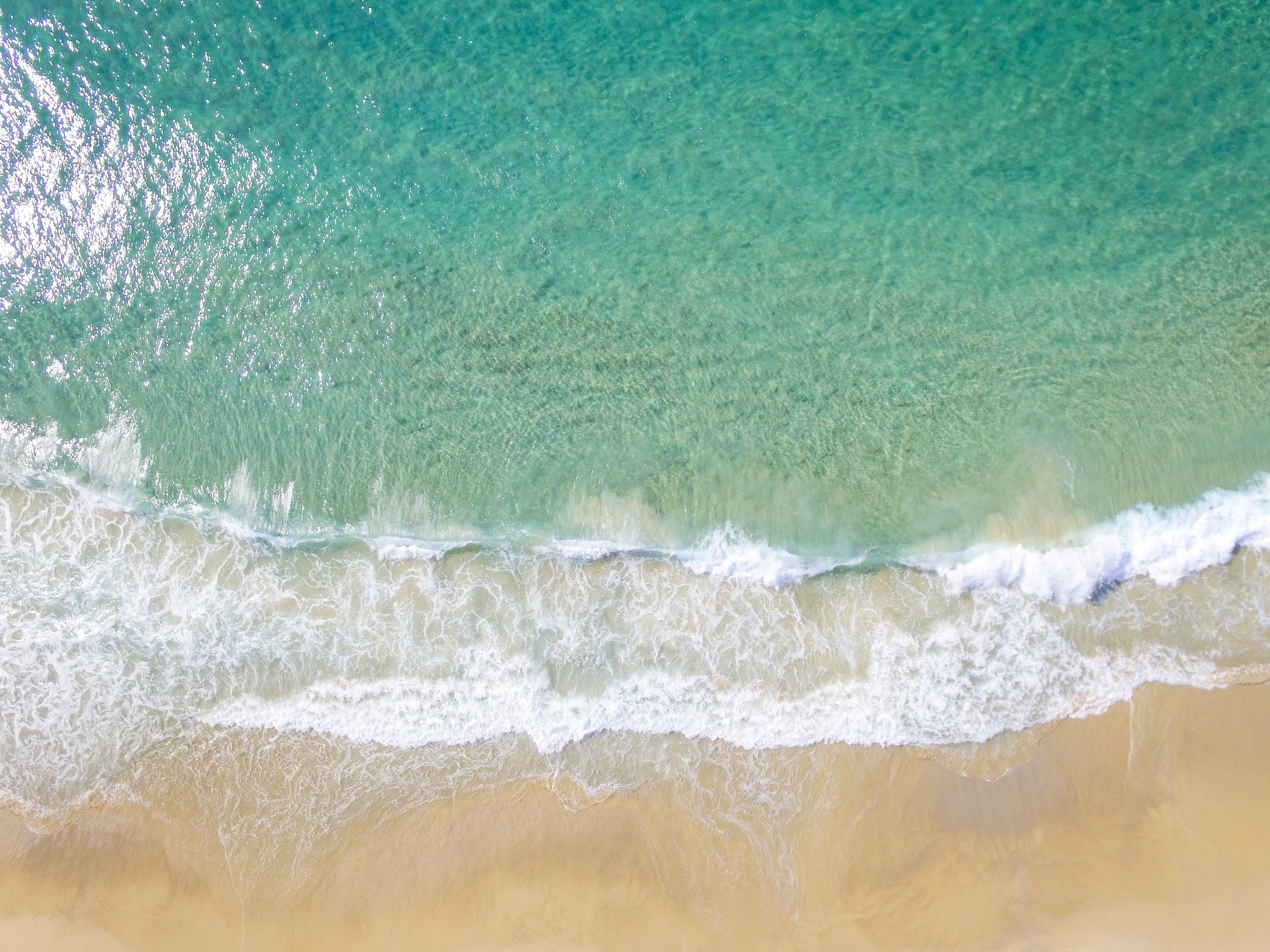 areal photography of sea