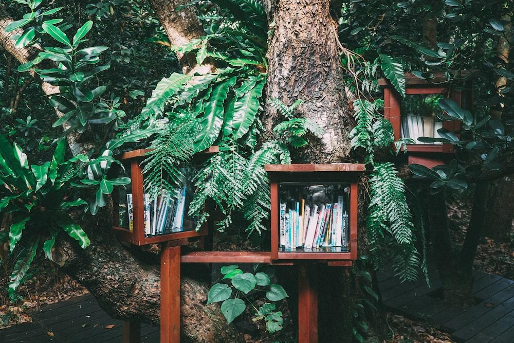 books piled on brown wooden bookshelf