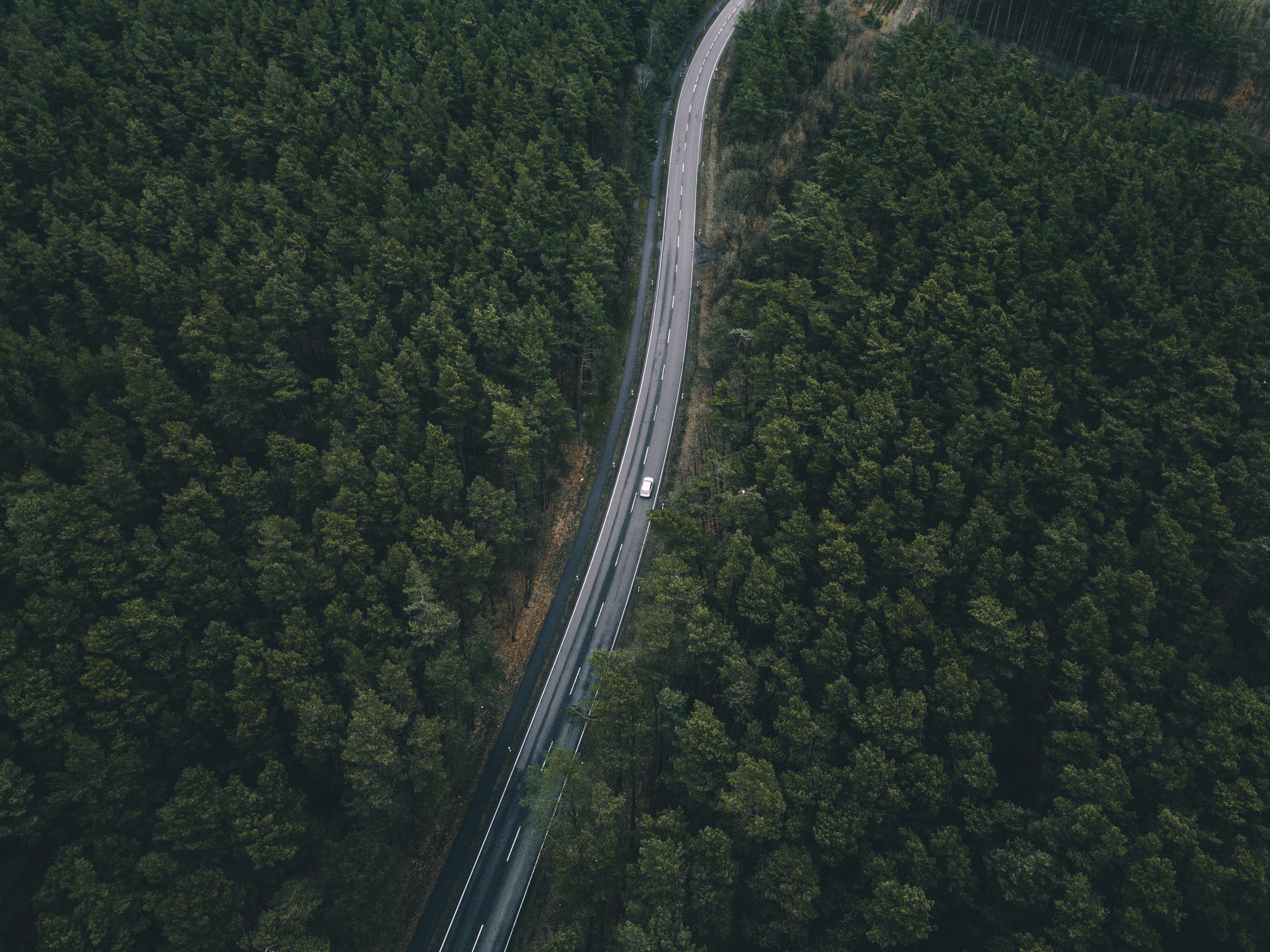 birds eye photography of white vehicle on road