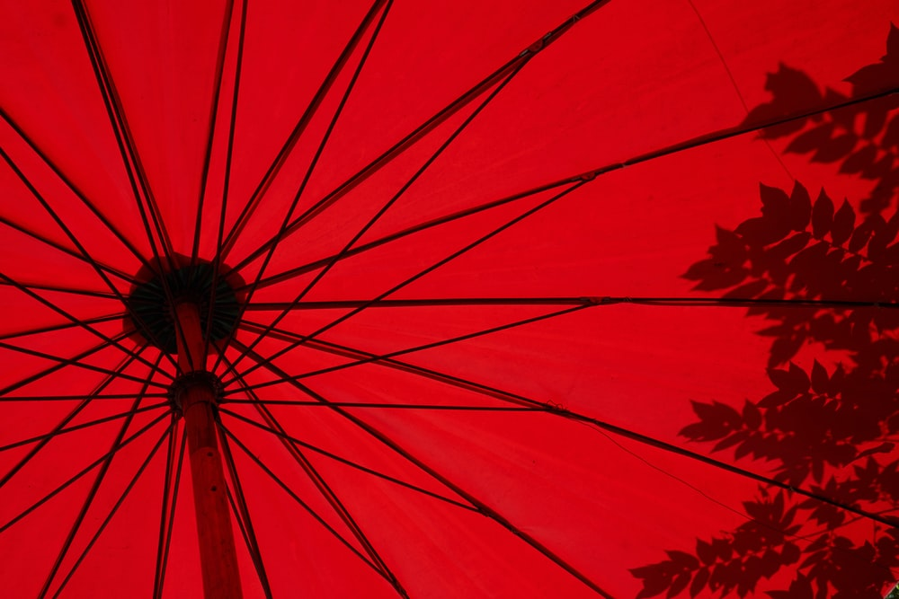 low angle photo of red umbrella