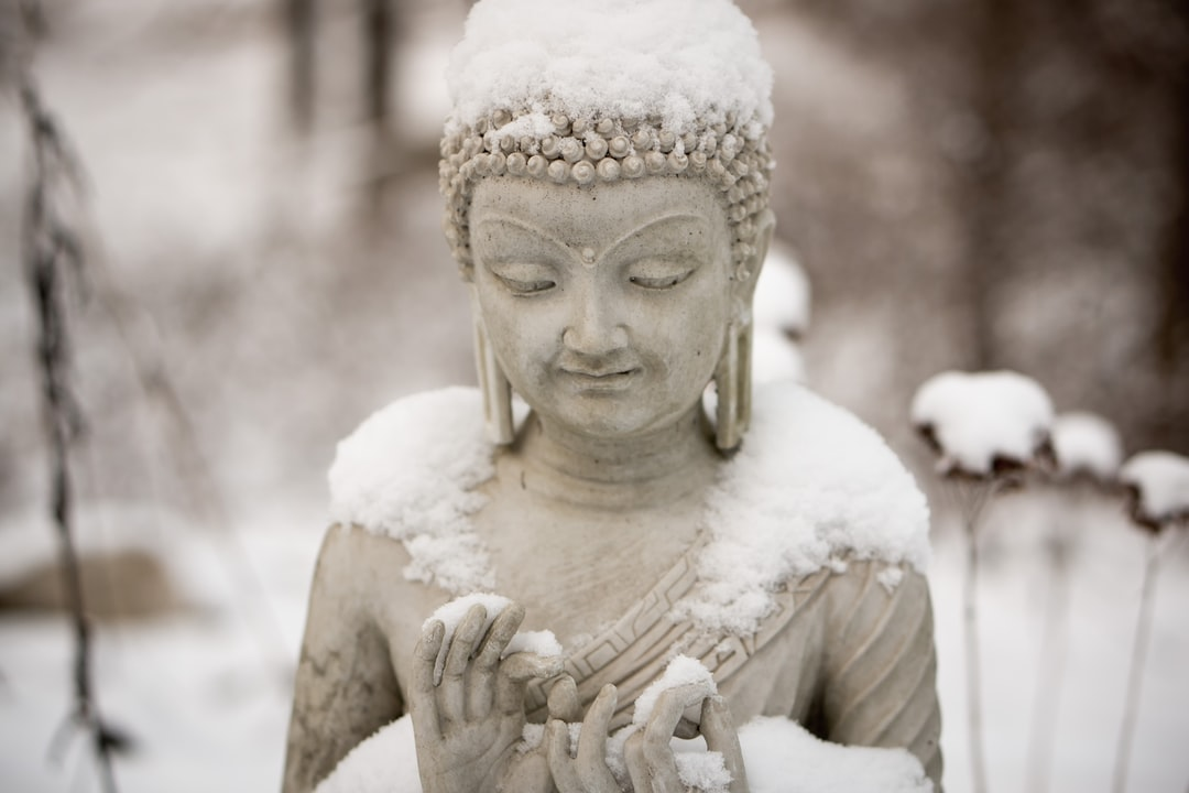 This little buddha statue, collecting snow on a winter day, is a main feature of my garden. In the summer I hardly notice him for all the activity around flowers, herbs and bees.