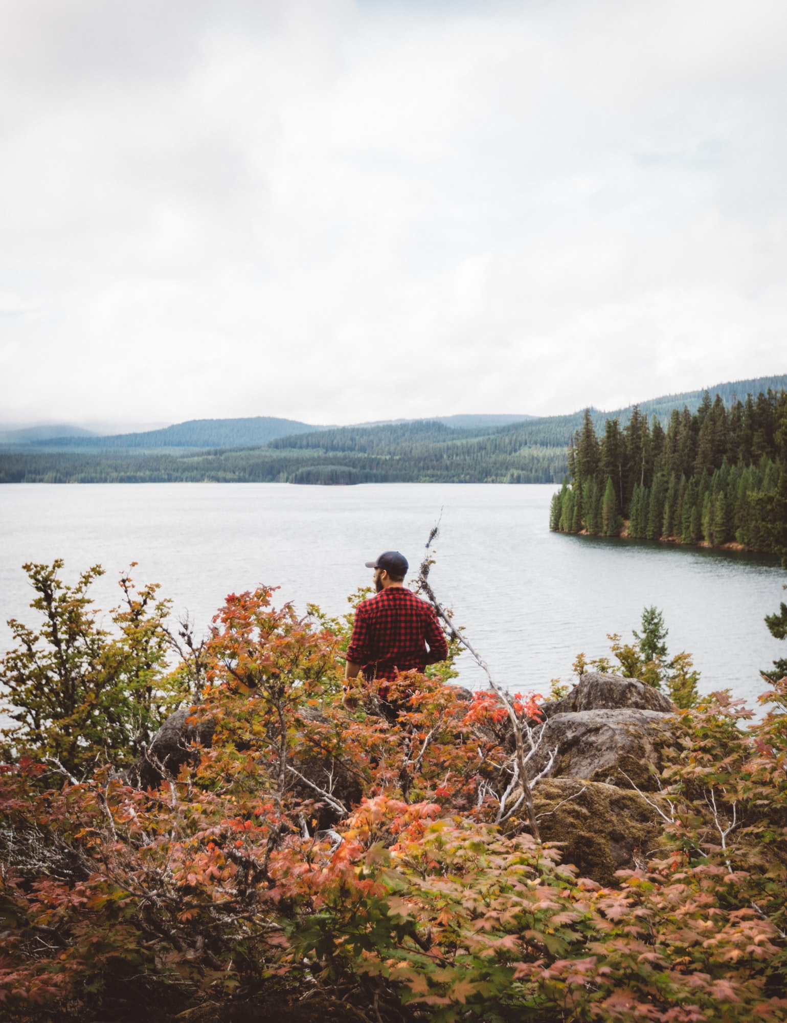person in flannel dress shirt staring on body of water during daytime
