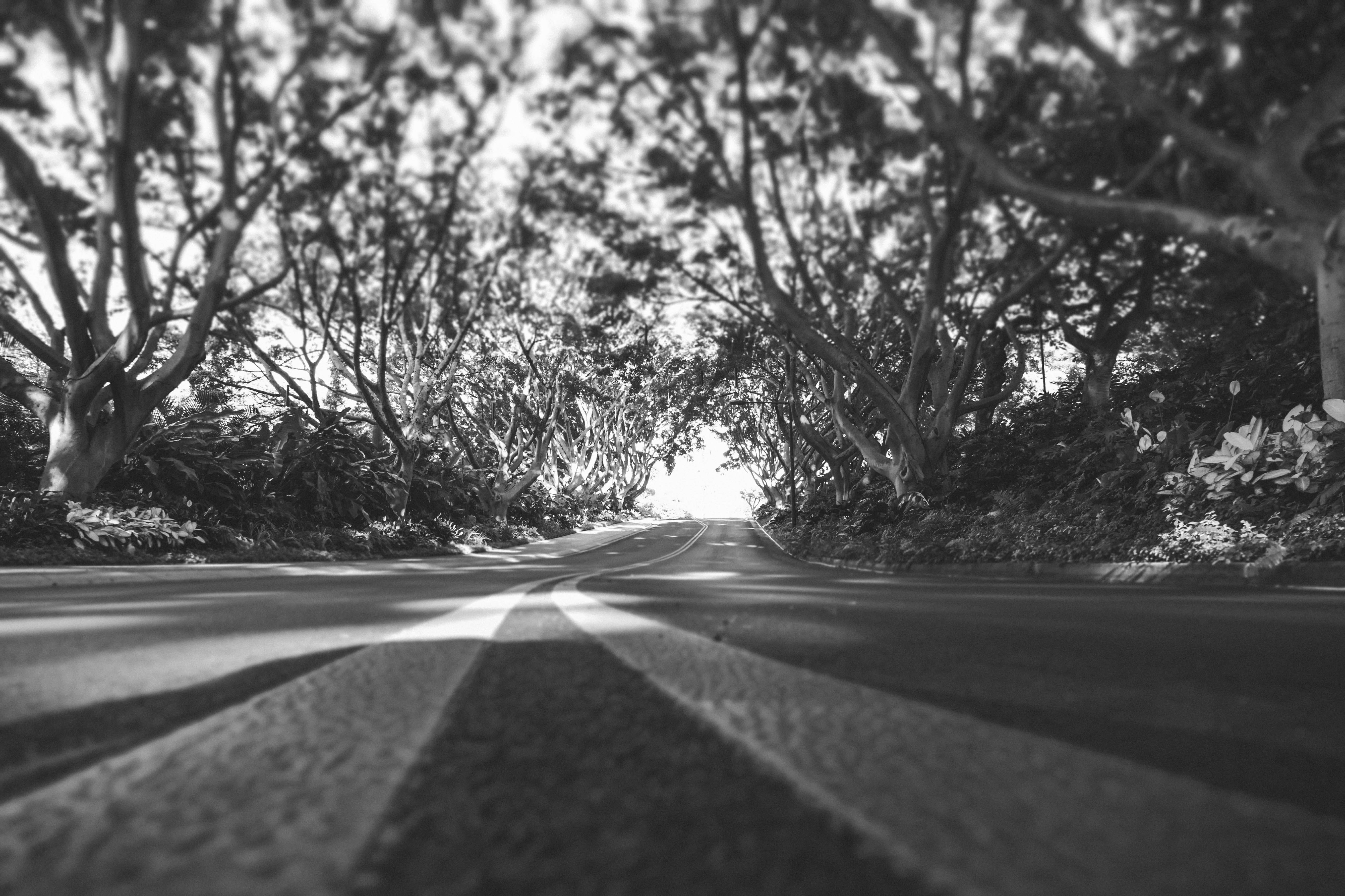 grayscale photography of concrete road