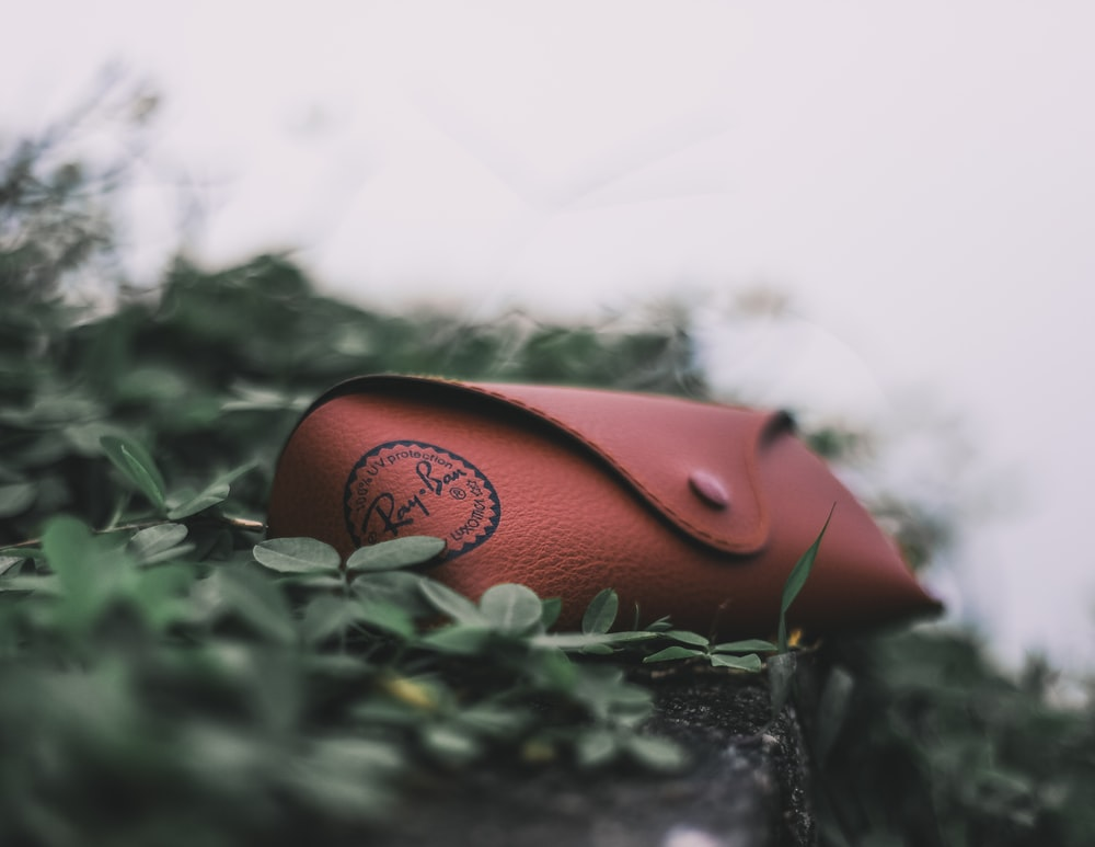 red Ray-Ban eyeglass case on leafed plants during daytime