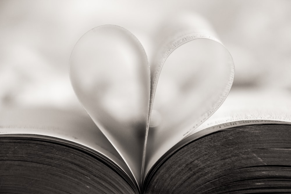 heart shape book page close-up photography