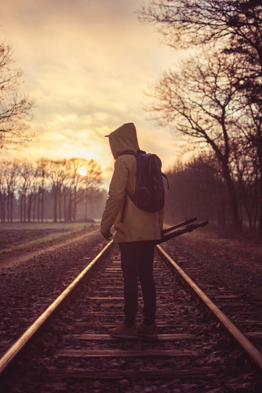 person on train rails near bare trees at daytime