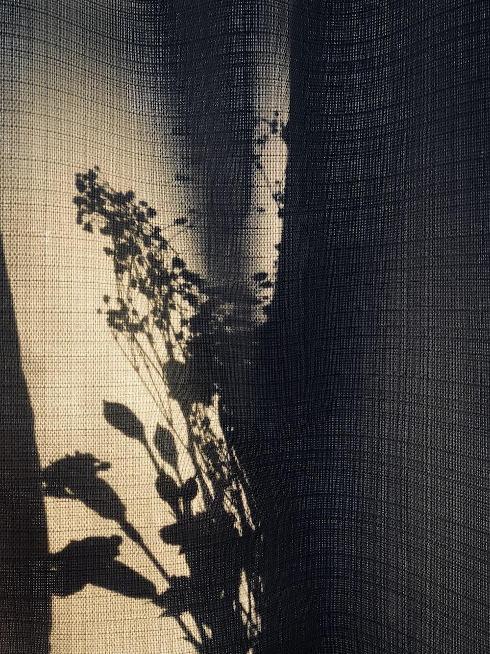 shadow of flowers